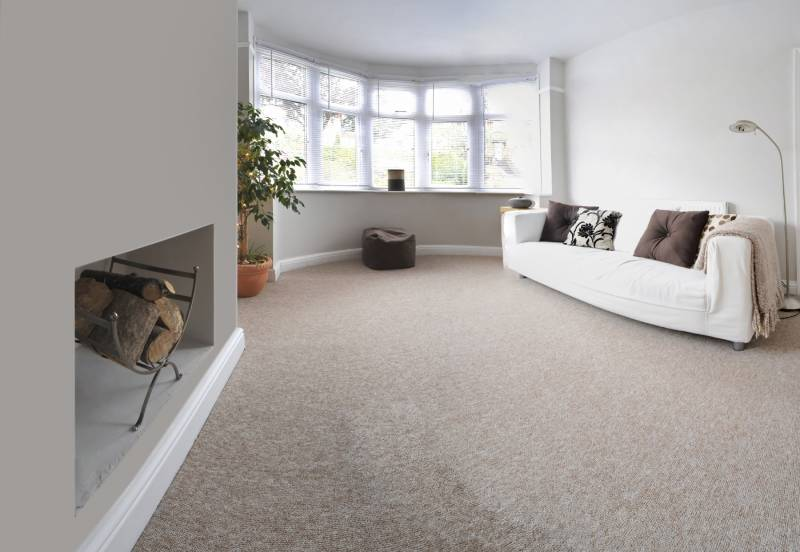 How to Clean Most Common Carpet Spills