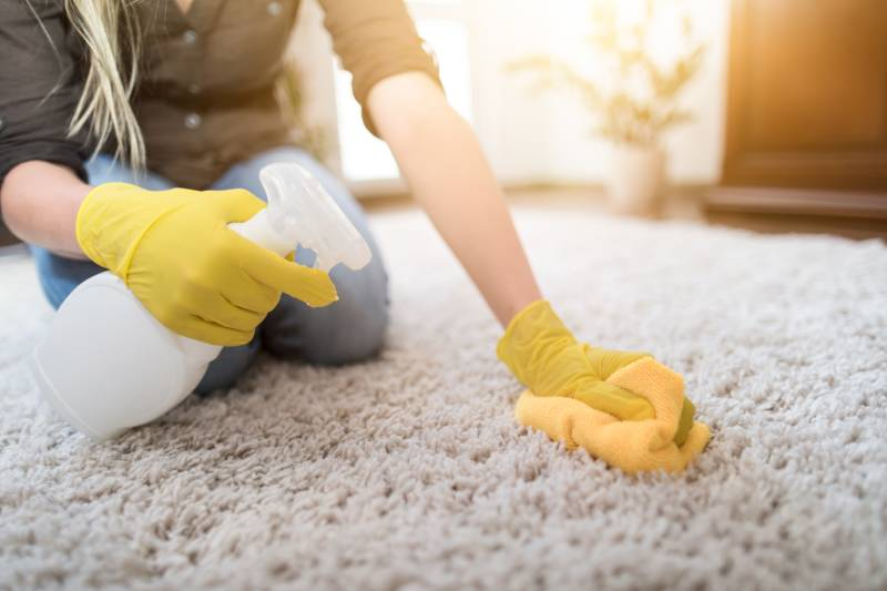 Spot Prone Areas for Carpet Spots